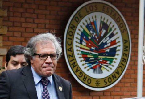 OEA valida informe de Comisión de Venecia y concluye que reelección no es un derecho humano