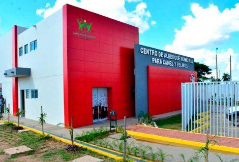 Gobierno Municipal alista inauguración del centro de albergue para canes y felinos