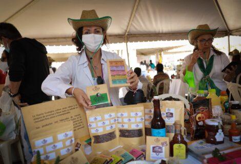 VII FERIA DE PRODUCTORES AGROECOLÓGICOS CRUCEÑOS: Conmemorando los 50 años del Cipca en Santa Cruz