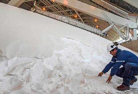 Reportan envío de más de 12 mil toneladas de urea a Brasil en marzo